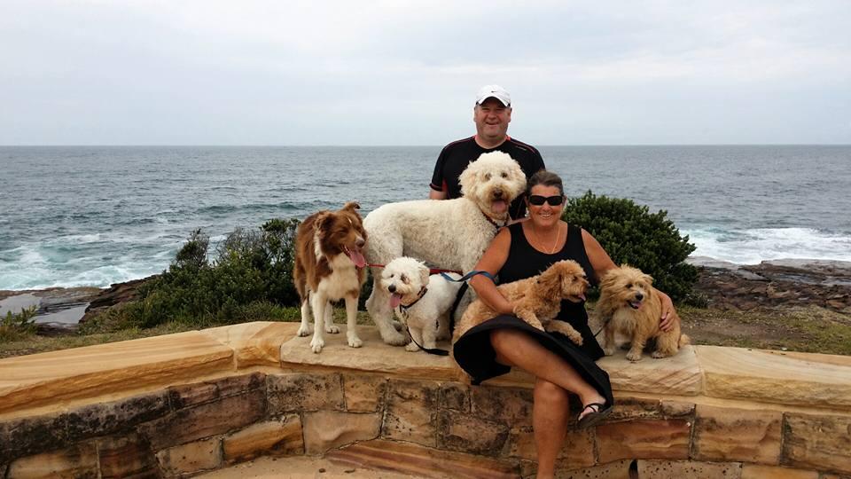 BeachDogZ Doggy Day Out!